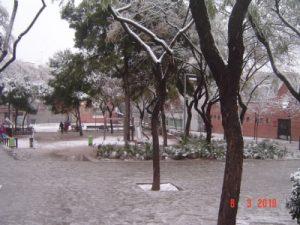 nevada10