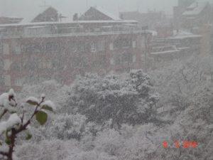 nevada4