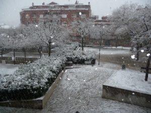 nevada6