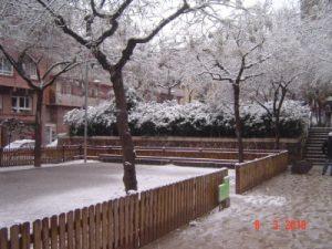nevada8